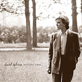 Play & Download Brilliant Trees by David Sylvian | Napster