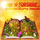 Play & Download rays of Sunshine Vol.1 (Tranquilizing music) by Various Artists | Napster