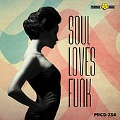 Soul Loves Funk by Various Artists
