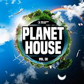 Planet House, Vol. 30 by Various Artists