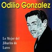 Lo Mejor del Jibarito de Lares by Odilio González