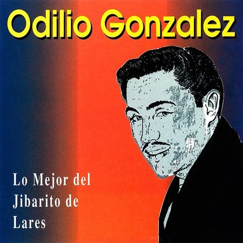 Play & Download Lo Mejor del Jibarito de Lares by Odilio González | Napster