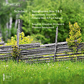 Play & Download Schubert: Orchestral Works by Svenska Kammarorkestern | Napster