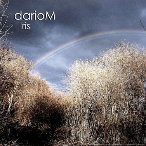 Iris von DarioM