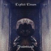 Play & Download Traumstaub by Explizit Einsam   Napster