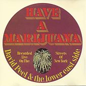 Have a Marijuana by David Peel and The Lower East Side