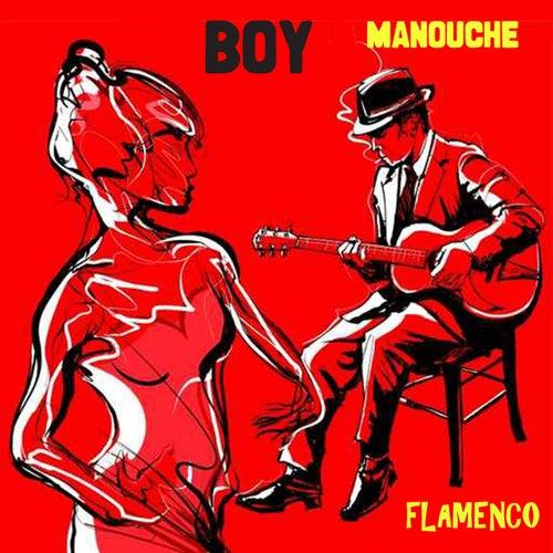 Manouche Flamenco von BOY
