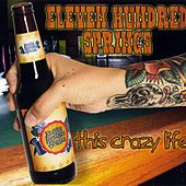 This Crazy Life by Eleven Hundred Springs