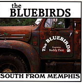 Play & Download South From Memphis by The Bluebirds | Napster