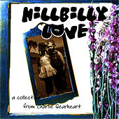 Hillbilly Love by Goose Creek Symphony