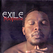 Play & Download Nkungulume by Exile | Napster