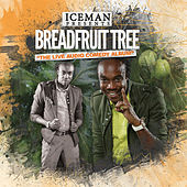 Breadfruit Tree by Iceman