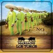 No Lo Beses von Mariachi Los Toros