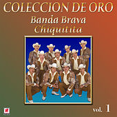 Play & Download Colección de Oro, Vol. 1: Chiquitita by Banda Brava | Napster