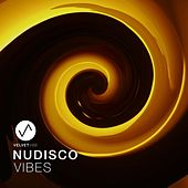 Nudisco Vibes, Vol. 1 by Various Artists