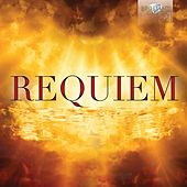 Play & Download Requiem by Various Artists | Napster