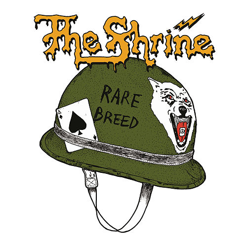 Play & Download Rare Breed by The Shrine | Napster