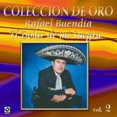 Colección de Oro Vol. 2 el Dolar de Mi Suegra by Rafael Buendia