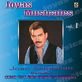Play & Download Joyas Musicales, Vol. 1 : Como un León Como un Gorrión by Various Artists | Napster