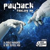 Feeling EP by Payback