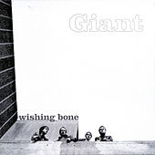 Play & Download Wishing Bone EP by Giant | Napster