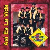 Play & Download Asi Es la Vida by Los Reyes Del Camino | Napster