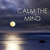 Play & Download Calm the Mind - Cultivate Positive Energy, Relax Your Body, Manage Fear and Worry, Music for Anxiety Relief by Calm Music Ensemble | Napster