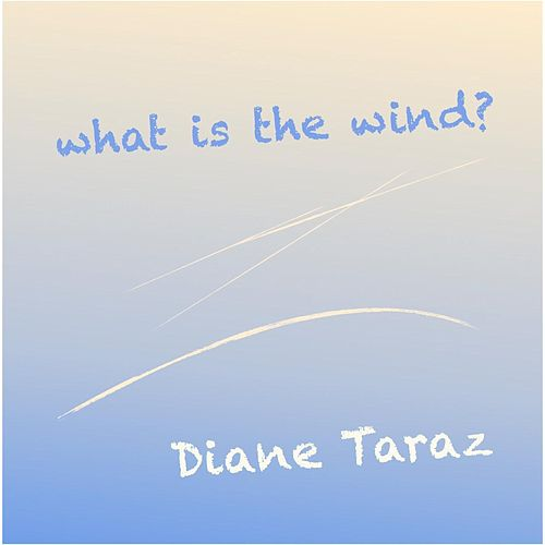 What Is the Wind? by Diane Taraz