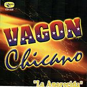 La Aparecida by Vagon Chicano