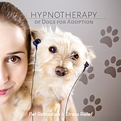 Hypnotherapy of Dogs for Adoption - Calming Music for Pets, Relaxing Dog Music, Peaceful Puppies, Sleep Aids, Pet Relaxation, Stress Relief by Calm Pets Music Academy