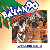 Bailando y Gozando by Various Artists