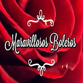 Play & Download Maravillosos Boleros by Various Artists | Napster