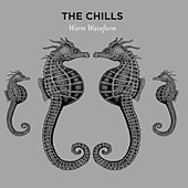 Warm Waveform by The Chills