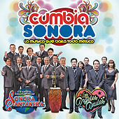 Play & Download Cumbia Sonora Con la Sonora Santanera & Los Ángeles Azules by Various Artists | Napster