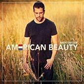 Play & Download American Beauty by Andy Snitzer | Napster
