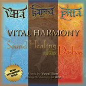 Vital Harmony: Sound Healing of the Doshas by Yuval Ron