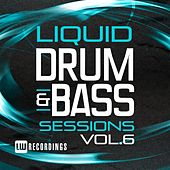 Liquid Drum & Bass Sessions, Vol. 6 - EP by Various Artists