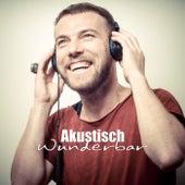 Akustisch Wunderbar by Various Artists