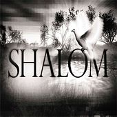 Play & Download Shalom - Single by Shay | Napster