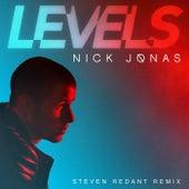 Levels by Nick Jonas