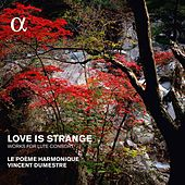 Love Is Strange: Works for Lute Consort by Various Artists