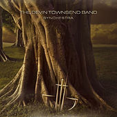 Synchestra by Devin Townsend Project