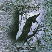 The Olden Domain by Borknagar