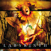 Play & Download Labyrinth by Labyrinth   Napster