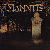 Sleep In Your Grave by Manntis