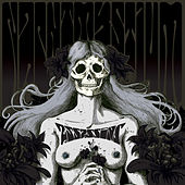 Play & Download Assassins: Black Meddle, Pt. 1 by Nachtmystium | Napster