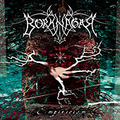 Empiricism by Borknagar