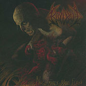 Nightmares Made Flesh by Bloodbath