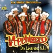 Play & Download La Mula Bronca.. by Hechizero De Linares | Napster