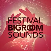 Festival Bigroom Sounds, Vol. 1 by Various Artists